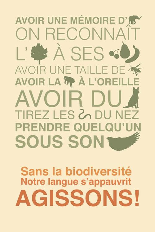 Projet élaboré dans le but de collaborer avec l'Espace pour la vie (Biodôme, Insectarium, Jardin botanique et Planétarium de la ville de Montréal) - 2/2