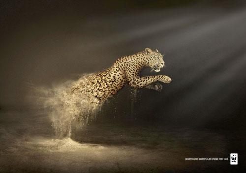 """Campagnes WWF """"La désertification détruit 6 000 espèces chaque année"""""""