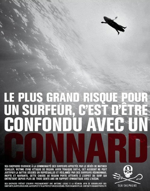 L'affiche de Sea Shepherd supprimée de la page Surf Prévention par Facebook